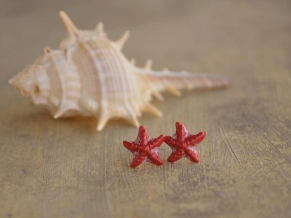 Mali uhani Morske zvezde