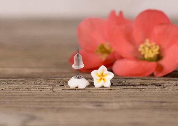 Mali uhani Plumerije