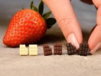 Festival čokolade v Radovljici